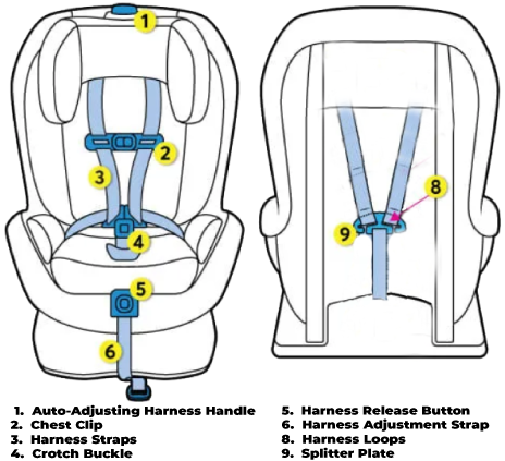 Auto-djusting-harness-diagram