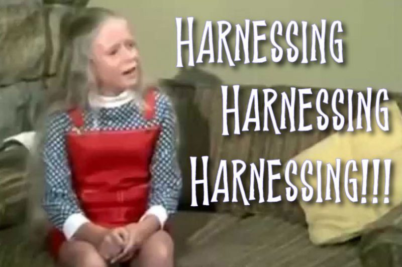 harnessing-harnessing-hrnessing